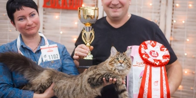 Москва,Гран-При Роял Канин 2016